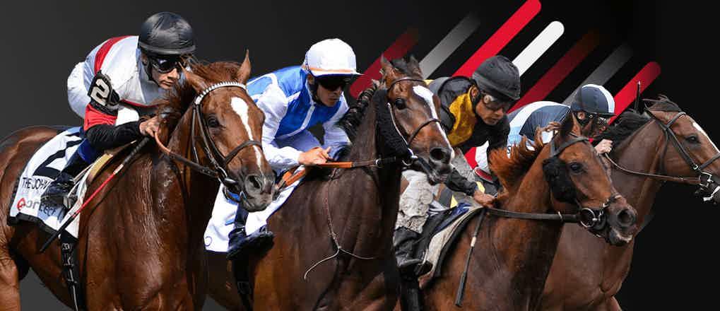 Spread betting destroys livestock virtuali goldbetting