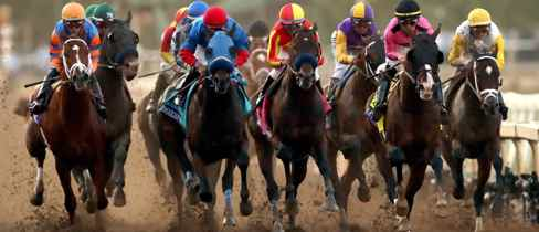 horse racing betting jargon explain thesaurus
