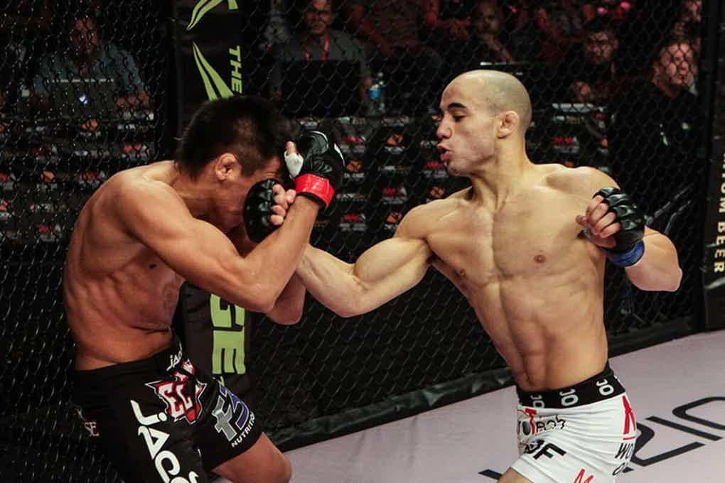 UFC 238 picks