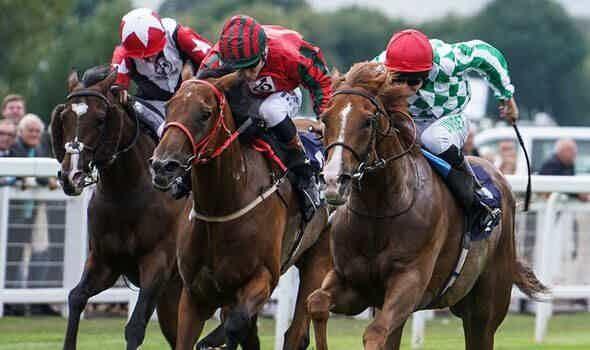 canada horse racing betting guide