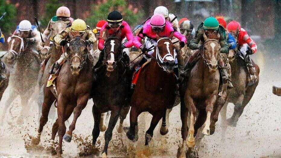 CSB Horse Racing